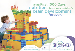 In the first 1000 days, nutrition affects your toddler's brain development forever.